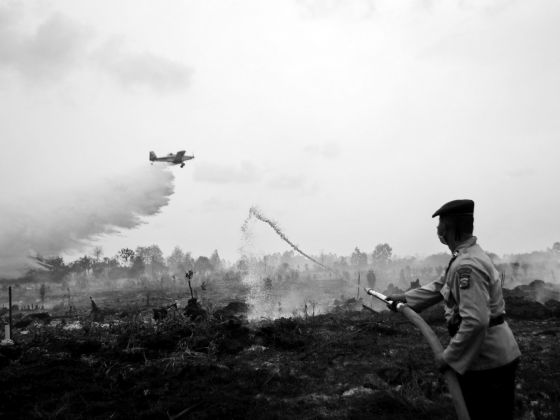 A water bomber dropping its payload as a police officer tries to extinguish a peat fire in Kampar, Riau province, in Sumatra in August. The reduction in fires this year must be credited to not only wetter weather, but also the political will and concerted efforts of the government of President Joko Widodo. PHOTO: REUTERS