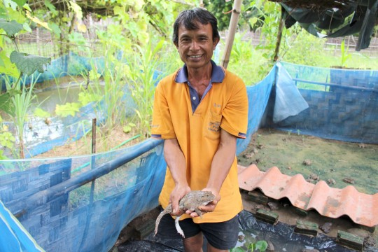 Kongsy and his frogs. Photo: UNDP Lao PDR/Somlith Khounpaseuth