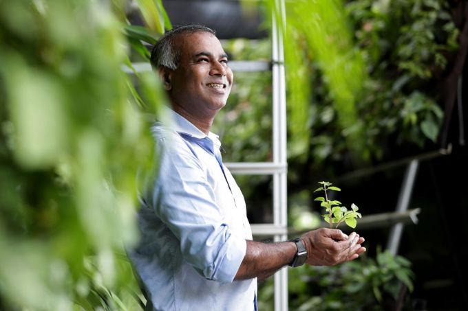 """Employers are starting to recognise the benefits of having greenery in work spaces,"" says Mr Veera, who set up Greenology in 2008, during the financial crisis . PHOTO: KELVIN CHNG"