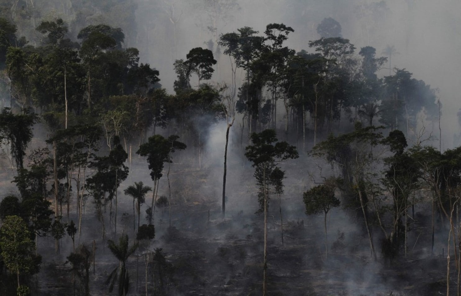 Smoke billows as an area of the Amazon rain forest is burned to clear land for agriculture on Sept. 23, 2013, near Novo Progresso, in Brazil's Para state. (Nacho Doce/Reuters)