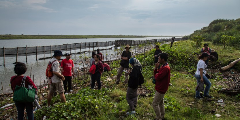 In a media training at the 2018 Asia-Pacific Rainforest Summit, journalists visited the Baros Mangrove Conservation Area. CIFOR Photo/Ulet Ifansasti