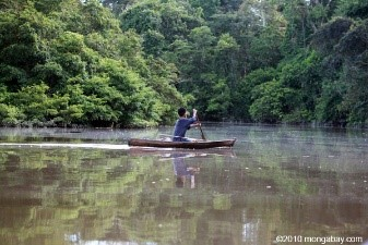 the-cheap-option-on-climate-change-recognize-indigenous-rights-to-forests