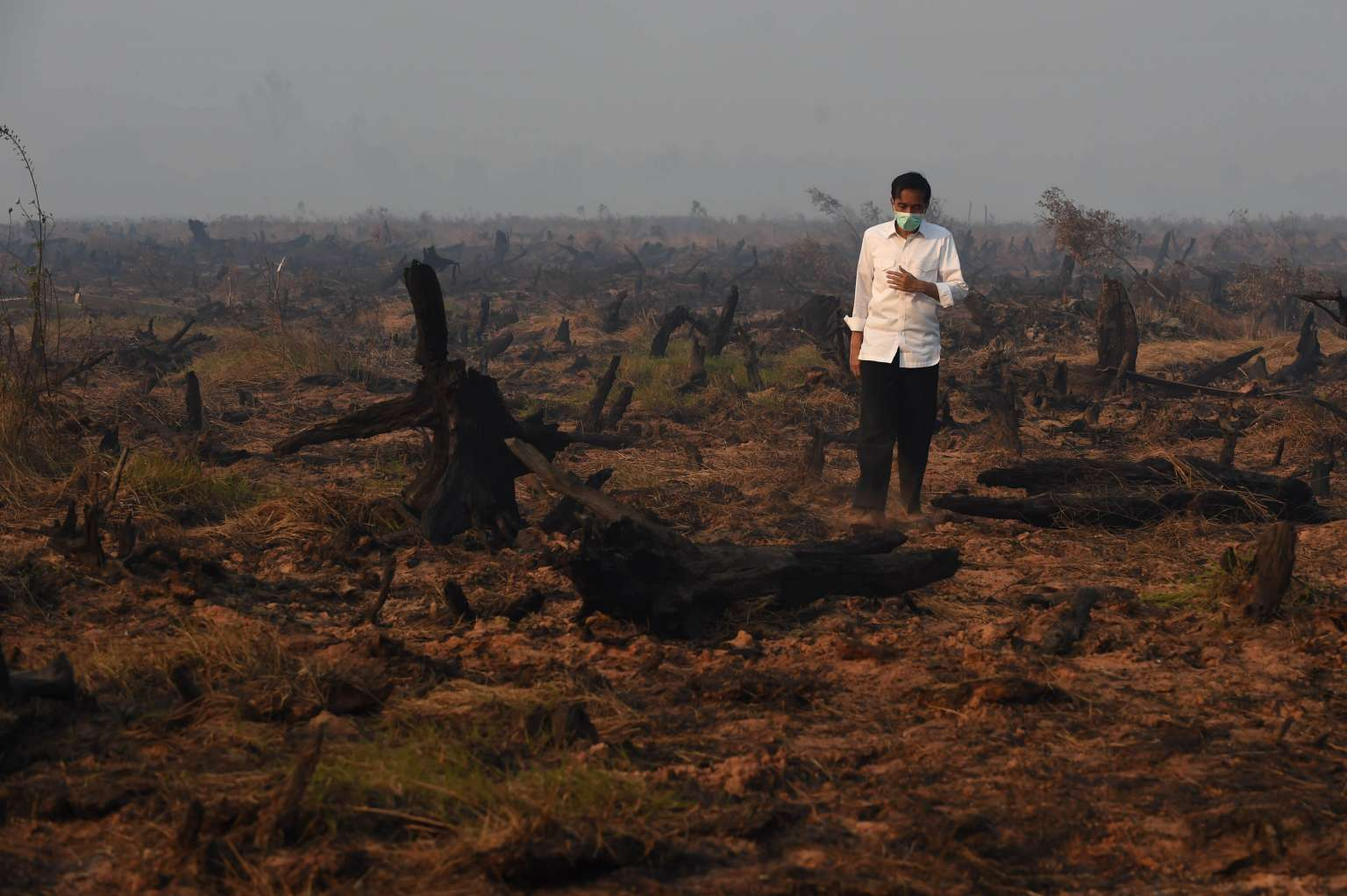 Indonesia's President Joko Widodo inspects a peatland clearing that was engulfed by fire in 2015. (Photo: AFP/Romeo Gacad)