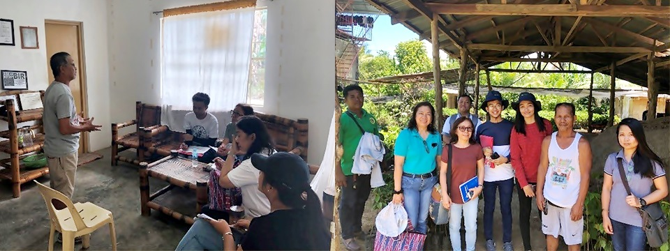 The project team conducted interviews to gather preliminary data with nursery operators and processors in Oriental Mindoro.