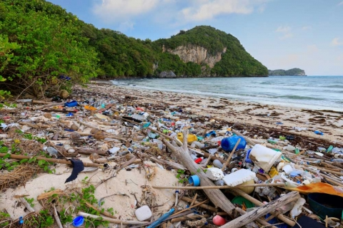 Why Do So Many Plastic Bottles Wash Up On Inaccessible Island? It's Ships, Scientists Say