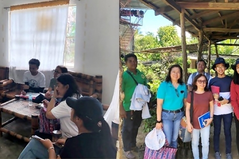 SEARCA and UPLB conduct baseline study on calamansi production and processing in Oriental Mindoro