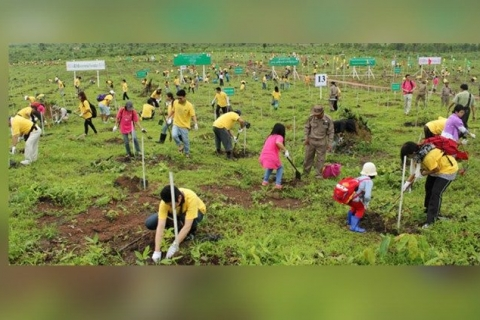 "Myanmar Church's tree-planting drive in the spirit of ""Laudato Si"""