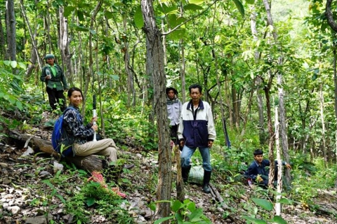 SEARCA-ASRF Grantees promote sustainable utilization of Non-Timber Forest Products in Thailand
