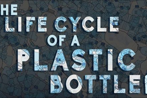 The Life Cycle of a Plastic Bottle
