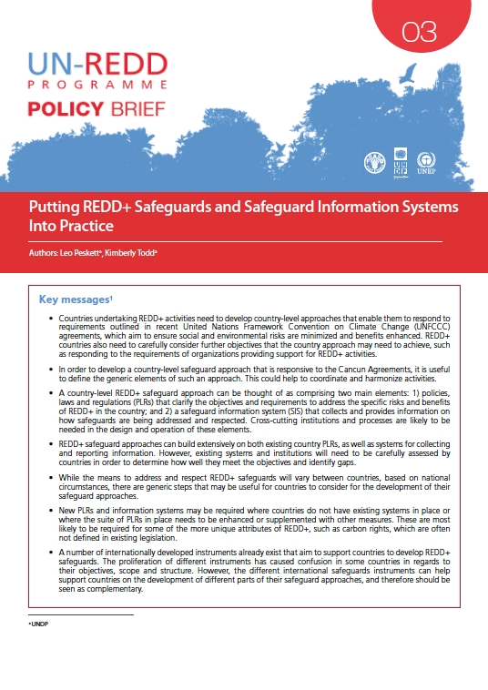 Putting REDD+ safeguards and safeguard information systems into practice
